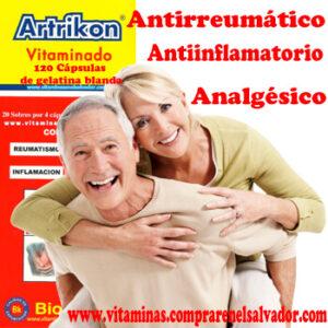 Artrikon 120 Cápsulas de gelatina blanda
